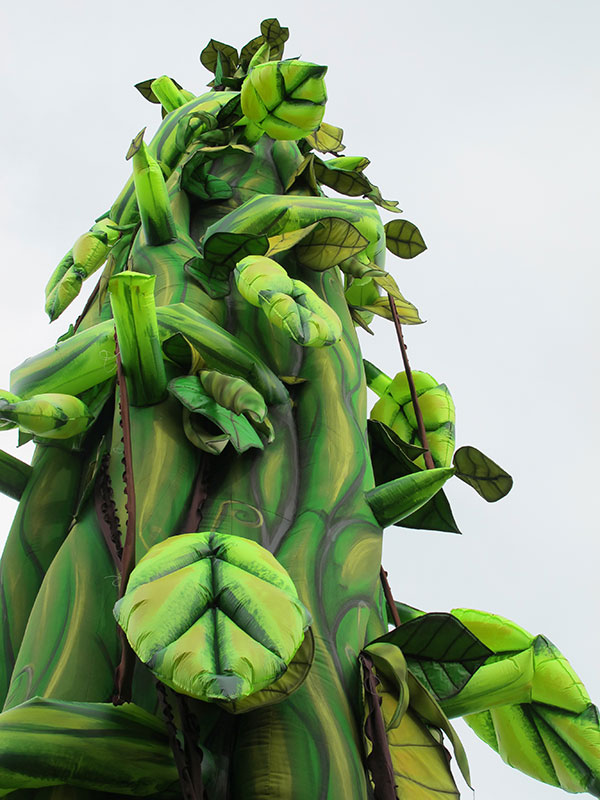 the bean stalk - photo #39