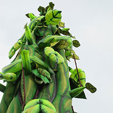 Beanstalk - special effects for pantomimes