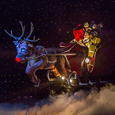 Rob the Reindeer & Sleigh - special effects for pantomimes